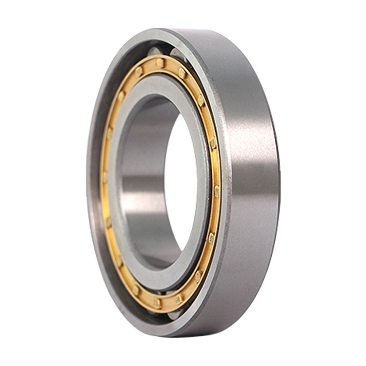 NF221 ISO cylindrical roller bearings